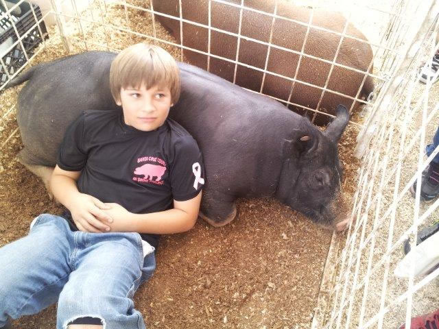 A boy lays down with a pig as a back rest.