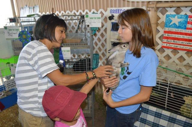 A girl holds a bunny while other people pet its soft fur.
