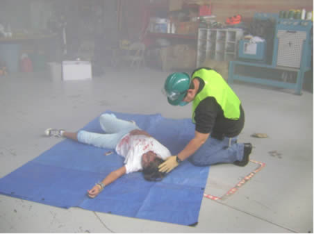 Simulated Exercise Disaster Medical Assessment